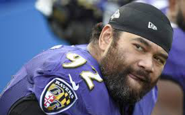 "Detroit Lions DT Haloti Ngata says controversial RB Ray Rice would be ""great addition"""