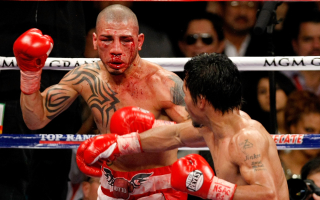 Boxing news: Miguel Cotto reveals his pick for Mayweather vs Pacquiao