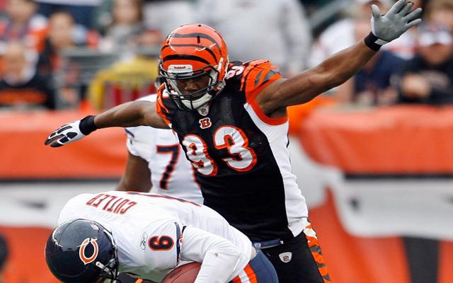 Cincinnati Bengals bring back DE Michael Johnson after one-year absence