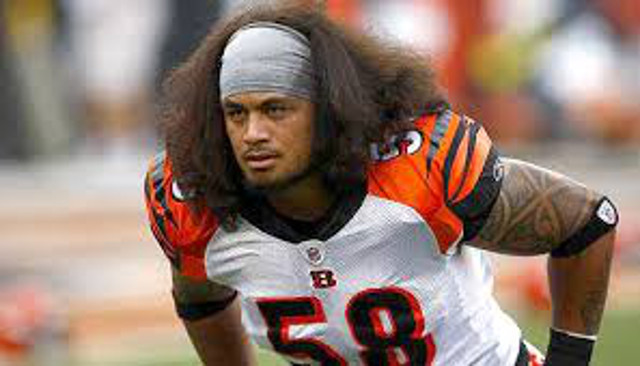 Cincinnati Bengals bring back veteran LB Rey Maualuga with three-year contract