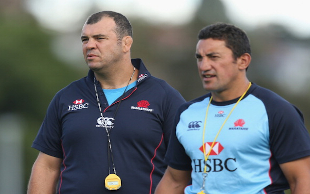 NSW Waratahs announce Michael Cheika replacement for 2016 Super Rugby season