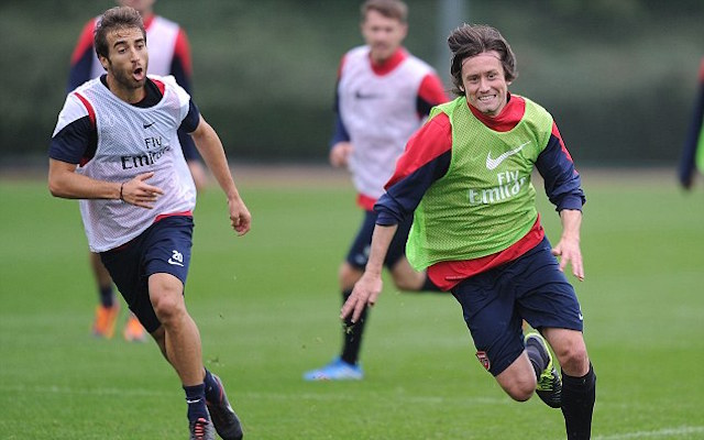 Tomas Rosicky pens new Arsenal deal: Veteran gets one more year