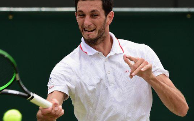 James Ward makes round three at Wimbledon: Britain gets very excited