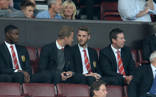 Man United ace insists there is NO ISSUE between Louis van Gaal and David de Gea
