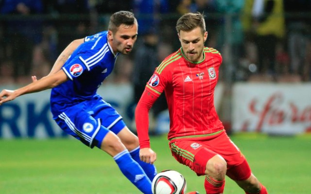Bosnia 2-0 Wales: Milan Djuric goal video and match report – Red Dragons qualify for Euro 2016 despite defeat