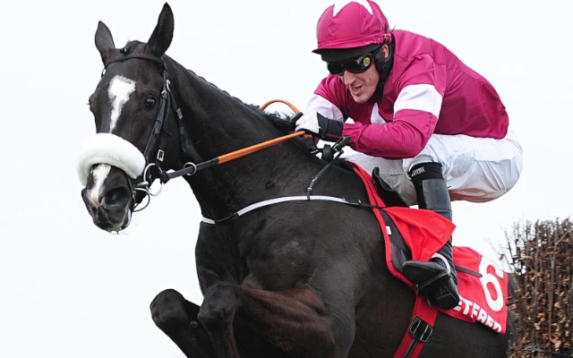 Private: Don Cossack looks the one in a very competitive Cheltenham Gold Cup