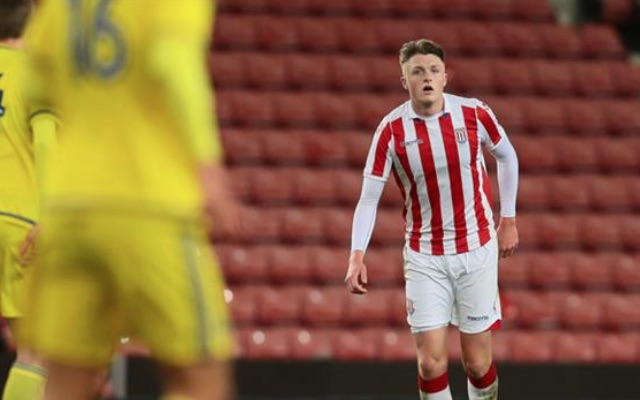 Giant Stoke City signing finally makes Potters debut