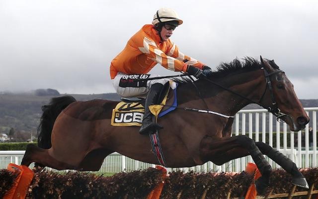 Three horses whose Cheltenham Festival odds are 'rather generous'